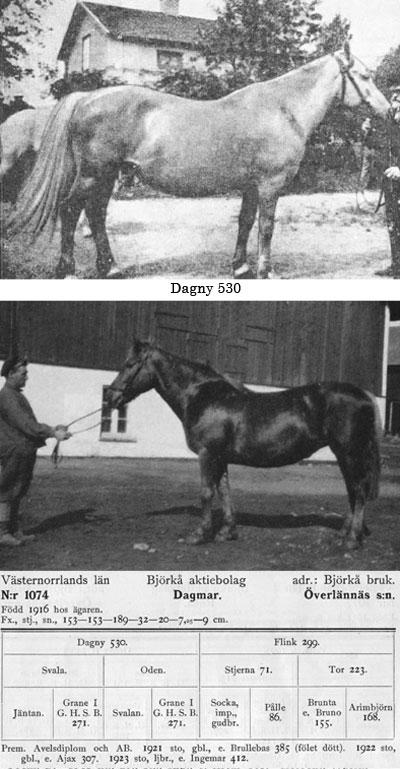 Dagmar-1074
