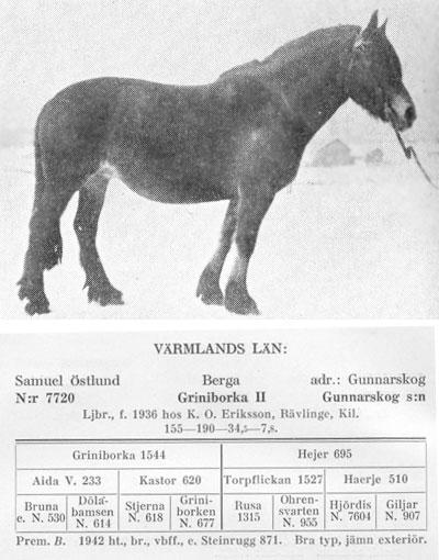 Griniborka-II-7720-stam-bild