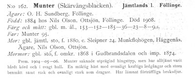 Munter-162-stam