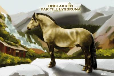 boblakken1