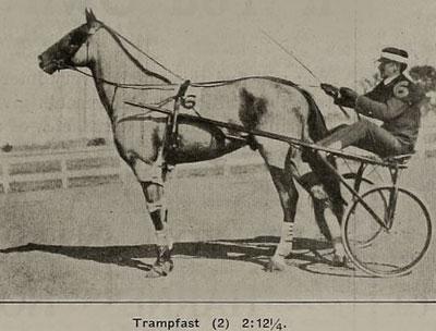Trampfast f. 1905 E: The Tramp U: Medieum Last UE: Happy Medium EE: Jay Bird