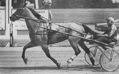 Dazzling Speed f. 1964 E: Speedster U: Princess Martha